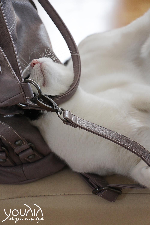 Paul mit Tasche