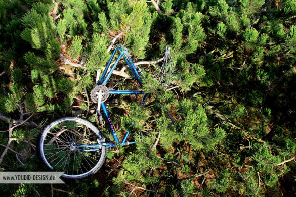 Fahrrad oben in den Bäumen | www.youdid-design.de
