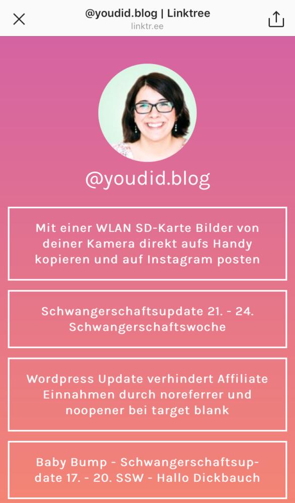 Mit Linktree mehrere Links in deiner Instagram Bio teilen - More than one link in Instagram Bio | https://youdid.blog