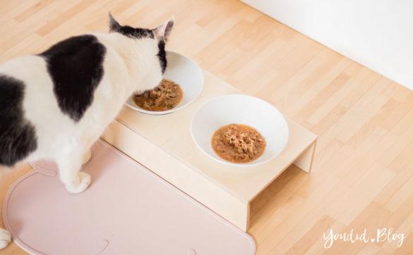 Anleitung DIY Katzennapf im skandinavischen Wohnstil - Fressnapf Futternapf Katzenbar für Interiorlover - DIY pet bowl | https://youdid.blog