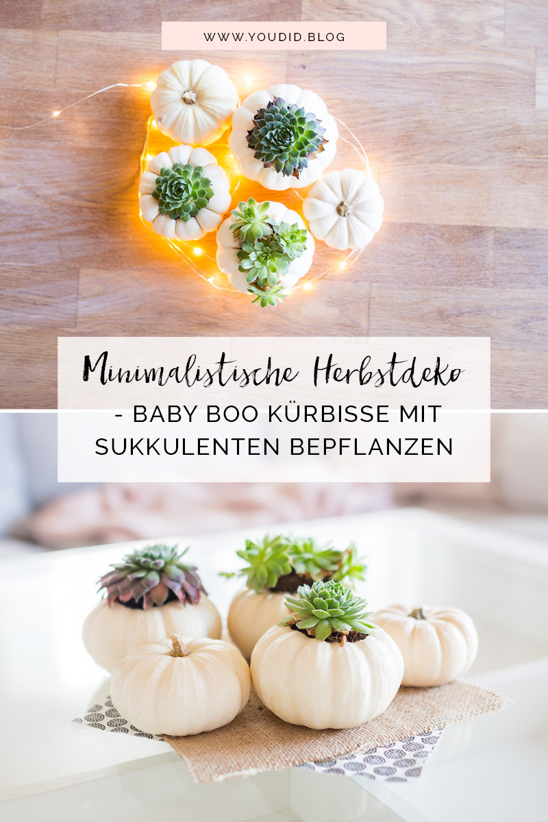 Herbstdeko Baby Boo Kürbisse mit Sukkulenten bepflanzen Tischdeko minimalistic autumn decor white pumpkin with succulents scandi | https://youdid.blog | https://youdid.blog