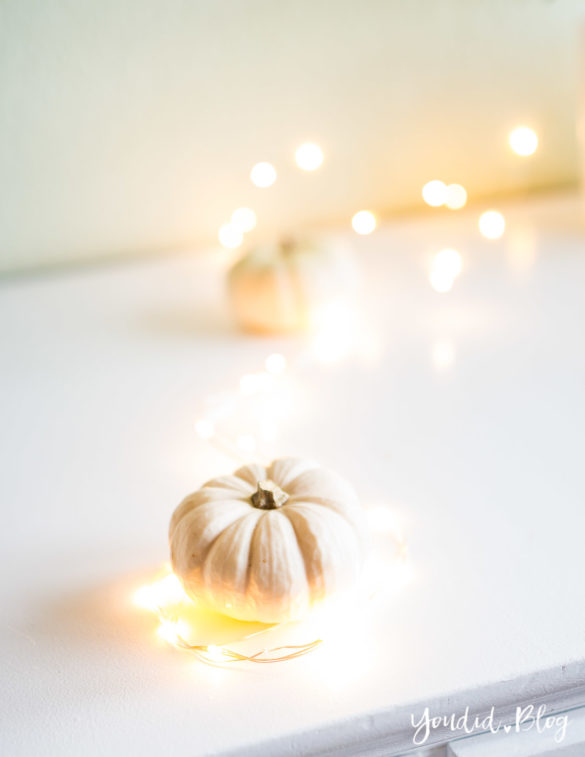 Minimalistische Herbstdeko Baby Boo Kürbisse mit Sukkulenten Sukkulente Tischdeko - minimalistic autumn decor white pumpkin with succulents table decoration | https://youdid.blog