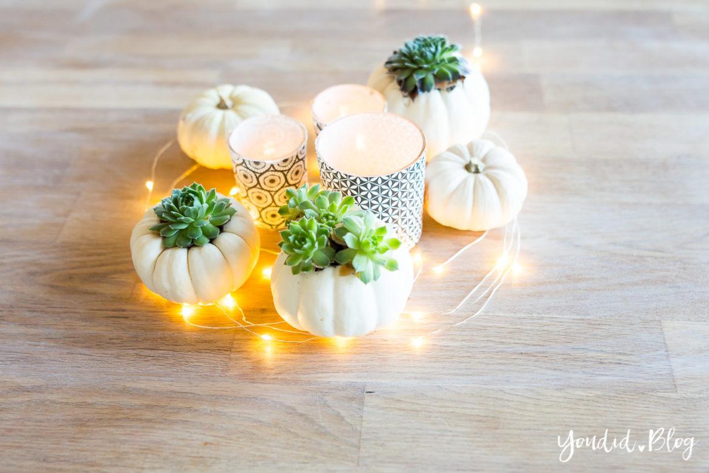 Minimalistische Herbstdeko Baby Boo Kürbisse mit Sukkulenten bepflanzen Sukkulente Tischdeko - minimalistic autumn decor pumpkin with succulents table decoration | https://youdid.blog