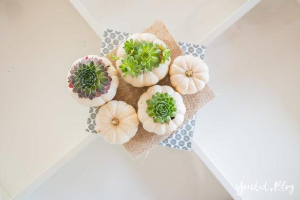 Minimalistische Herbstdeko Baby Boo Kürbisse mit Sukkulenten bepflanzen Sukkulente Tischdeko - minimalistic autumn decor white pumpkin with succulents | https://youdid.blog