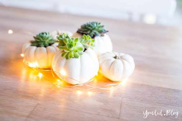 Minimalistische Herbstdeko Baby Boo Kürbisse mit Sukkulenten bepflanzen - minimalistic autumn decor white pumpkin with succulents table decoration | https://youdid.blog
