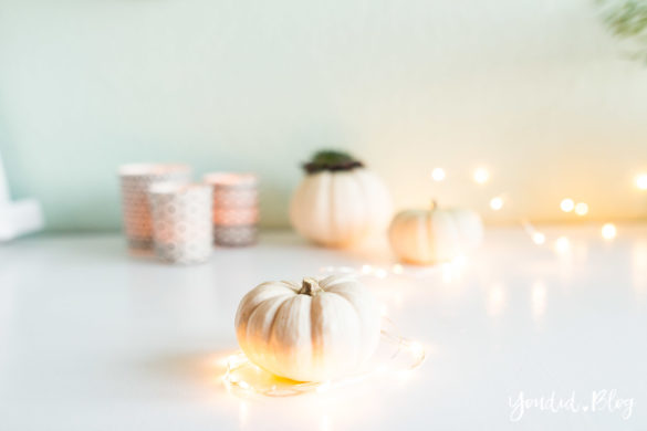 Minimalistische Herbstdeko Kürbisse mit Sukkulenten bepflanzen Sukkulente Tischdeko - minimalistic autumn decor white pumpkin with succulents table decoration | https://youdid.blog